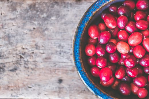 autumn cranberries