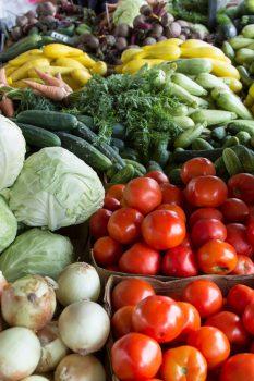 vegetables for culturing