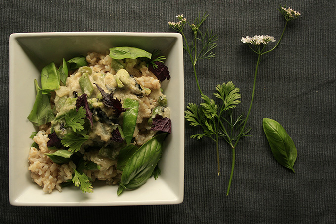 Green thai curry with long grain rice in square bowl