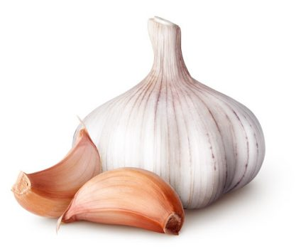 garlic for staying healthy this winter