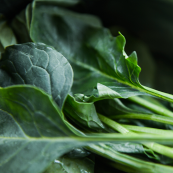 Green leafy veg for nutrients