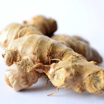 herbal teas - ginger